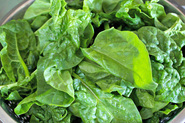 Image result for Spinach 600x400